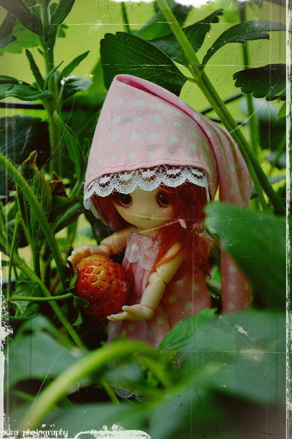 Moe dévore les fraises !
