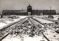 La rampe d'Auschwitz