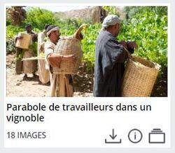 Parabole des ouvriers dans la vigne