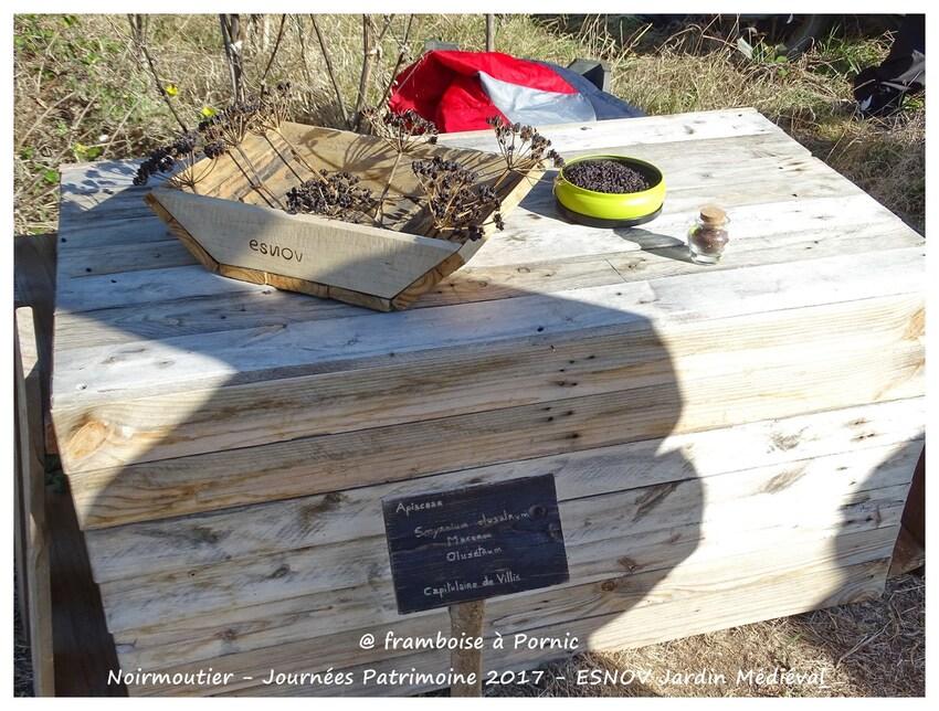 Noirmoutier - JARDIN MEDIEVAL - ESNOV