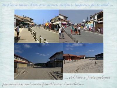 Blog de chipiron : Un chipiron dans les Landes, La plage