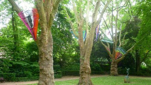 Beaux arbres dans les jardins