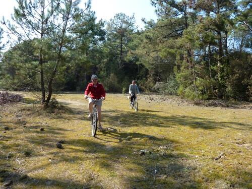 Bois-Plage-chemin-dans-la-foret-avec-Philippe-et-Evelyne-v.jpg
