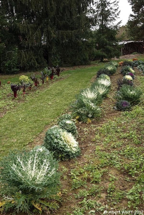 Un jardin extraordinaire (Part 2 et fin)