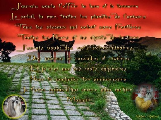 collage_2012-01-25_22-07-03.p