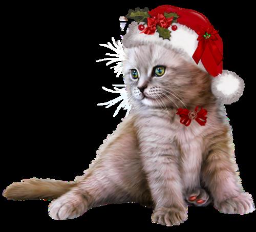 chat et souris Noël