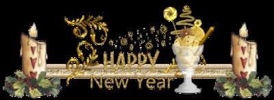 Tous mes voeux pour 2016 !