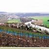 Le vignoble et la Marne en contrebas