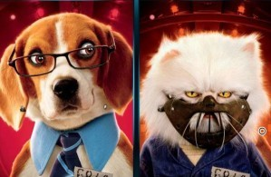 Cats and dogs similarities