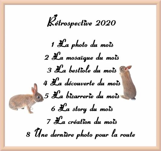 Rétrospective 2020 : mars...