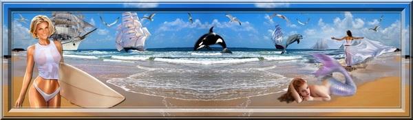Bannières sur le surf