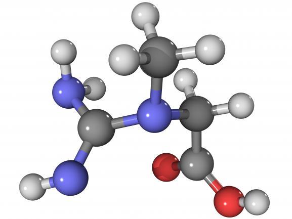 Schéma scientifique d'une molécule de créatine.