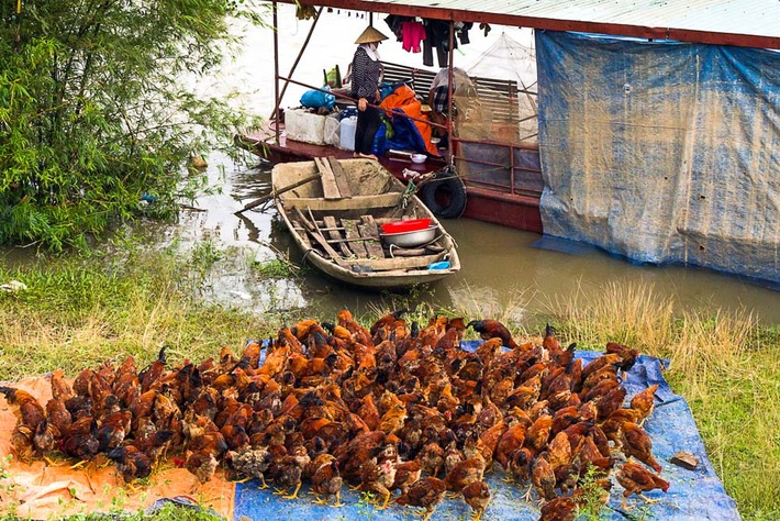 Ninh Binh apres la tempete