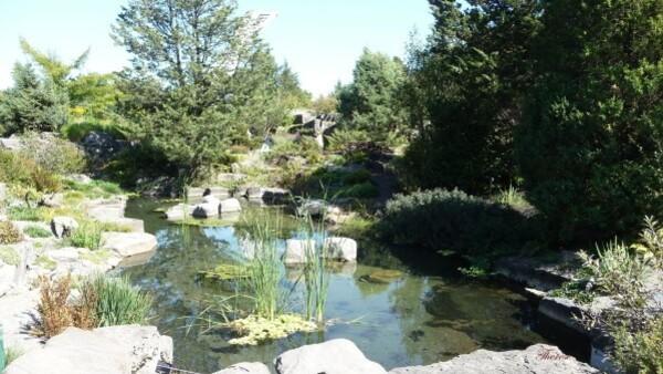 Jardin botanique (73)