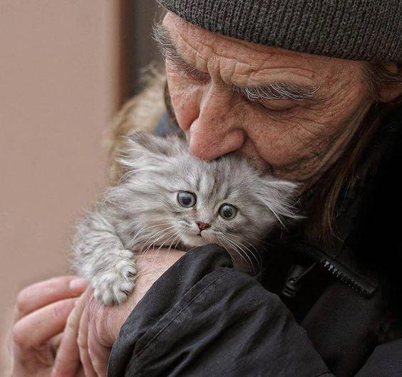 vieil-homme-sdf-embrasse-chaton-gris-dans-ses-mains
