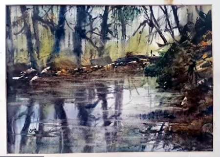 Dessin et peinture - vidéo 2092 : Peindre à l'aquarelle,un cours d'eau en sous-bois, à partir d'une photographie prise sur site
