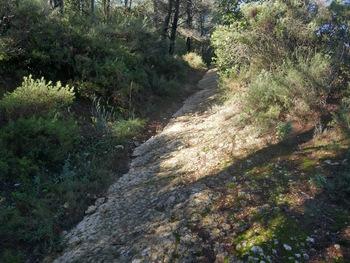 Les dalles ont été décapées par les récentes pluies