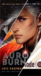 The Aurora cycle