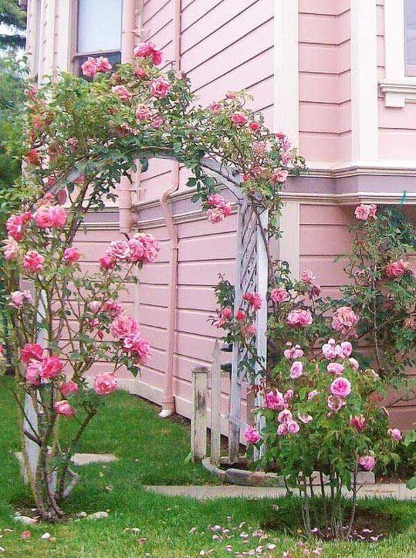 Tout en rose