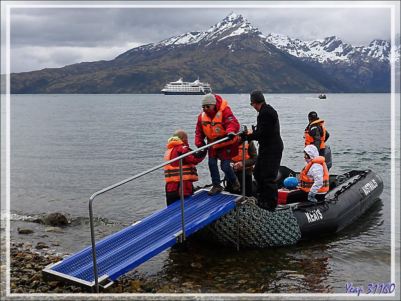 Nous sommes arrivés, le Stella Australis jette l'ancre dans le Seno (Fjord) de Agostini, sous le Monte Buckland - Terre de Feu - Patagonie - Chili
