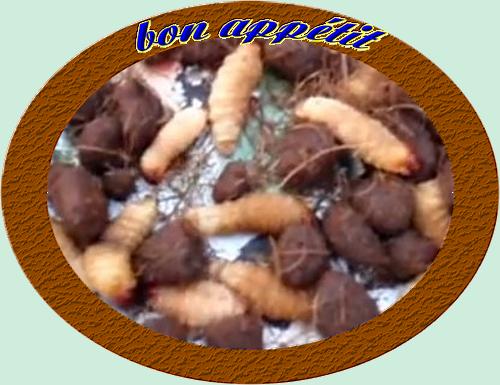 Chenilles aux arachides