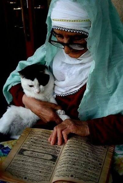 12- Les vieilles dames et la lecture- En couleurs