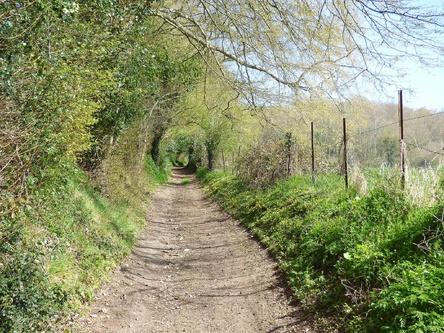 Le chemin des anciens moulins