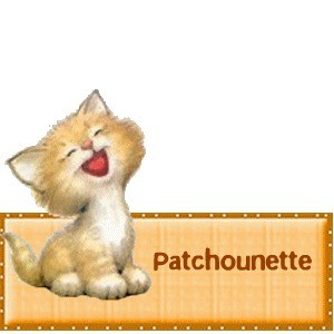Patchounette chaton très joyeux rigolo