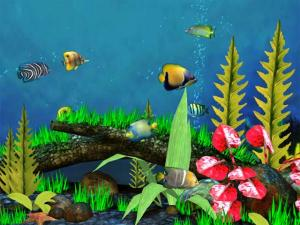 aquarium-3d-screensaver-13.jpg