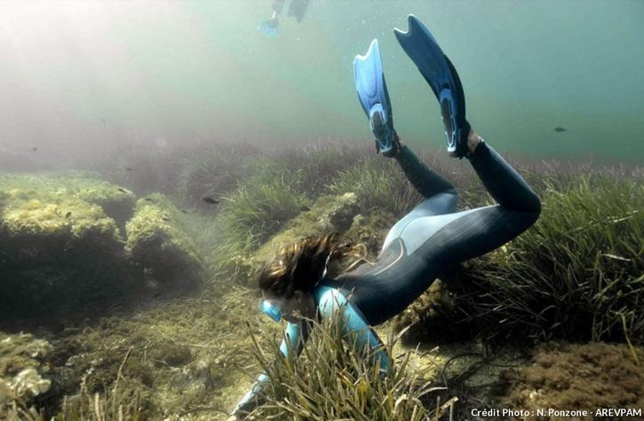 Sentier sous-marin archéologique d'Olbia