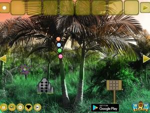 Jouer à Palm tree forest escape