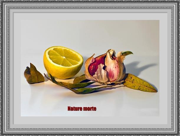 Dessin et peinture - vidéo 2944 : Nature morte à l'ail, au citron et aux feuilles de laurier 1 et 2 ( le dessin) - acrylique ou huile.