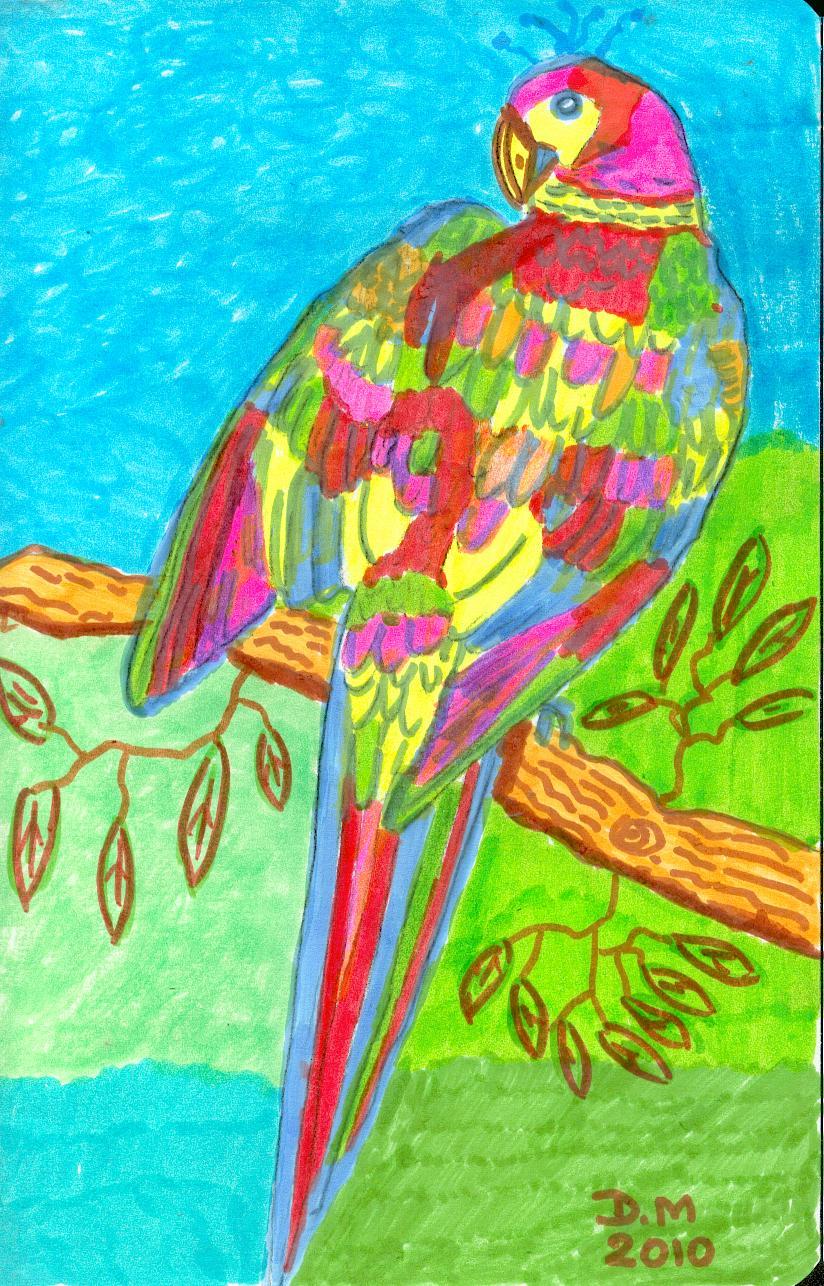 Dessins perroquets et ara domandalas - Perroquet en dessin ...