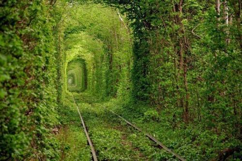 magnifique passage