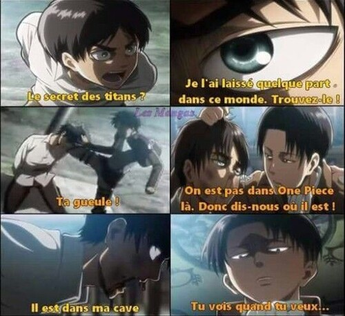 Eren version Gold D Roger