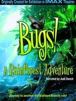 Filmé en grande partie dans la forêt tropicale de l'île de Bornéo, BESTIOLES! en 3D est une remarquable incursion dans l'étrange monde des insectes. Ses personnages principaux sont deux représentants du groupe d'animaux le plus diversifié de la planète: une mante religieuse, Hierodula, et un papillon, Papilio, que le film suit tout au long de leur cycle de vie, de la naissance à la maturation, jusqu'à leur rencontre au coeur même de la forêt....-----...Origine du film : Britannique Réalisateur : Mike Slee Acteurs : Antonio Sabato Jr., Angie Everhart, R. H. Thomson Genre : Documentaire Durée : 40 min Année de production : 2003