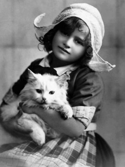 10 - Des enfants et des chats