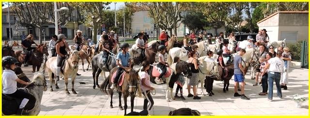 Des chevaux dans la ville.........