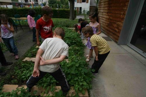 Le jardin des CP en juin dernier