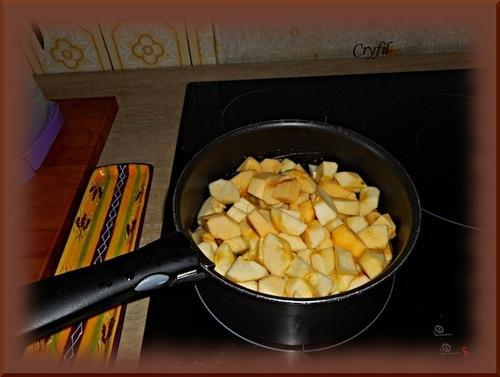 Mes premiers pots de compote de pommes