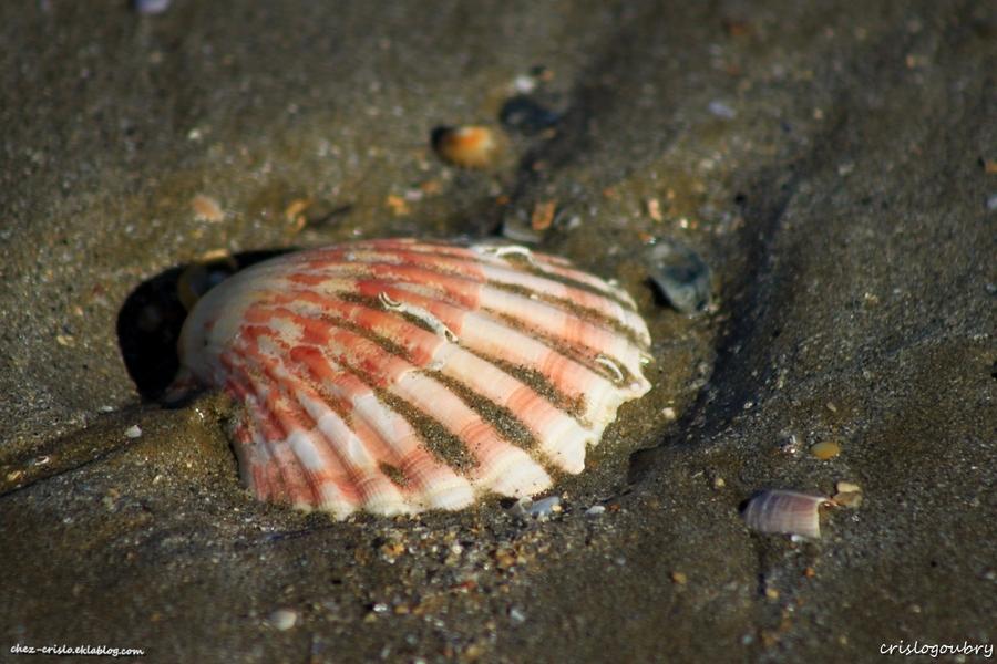 sur le sable..