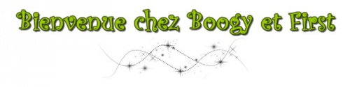 Le site de Boogy & First !