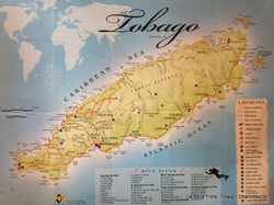 Navigation vers Tobago