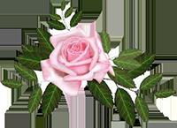 ♥Bouquet de Fleurs♥