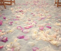 Jolies images pour voir la vie en rose <3