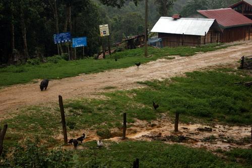 Laos: à la rencontre des Hmong et des Lao