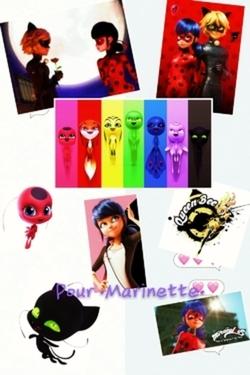 Poster que j'ai créer pour .Marinette..
