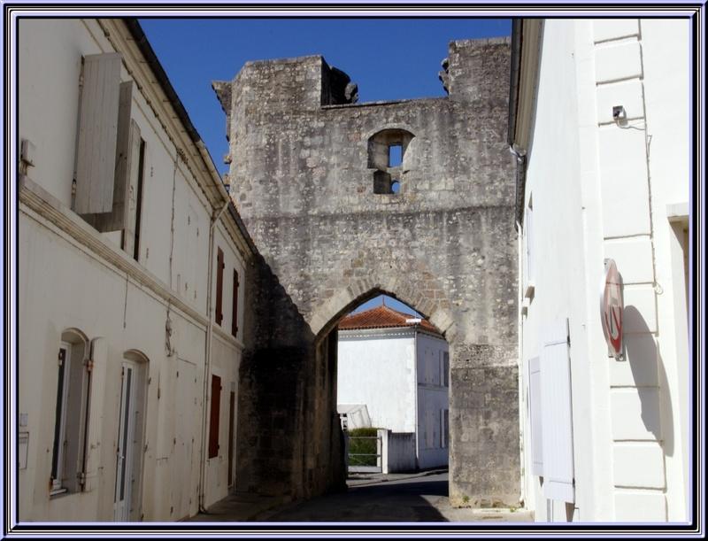 Balade dans la campagne charentaise à Tonnay Boutonne (17)