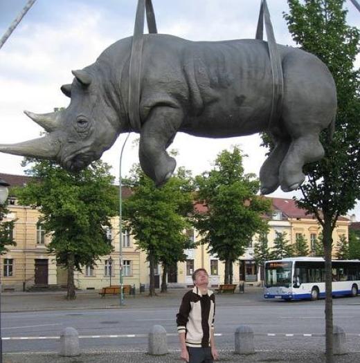 http://lancien.cowblog.fr/images/Paysages2/RhinoPostdam.jpg