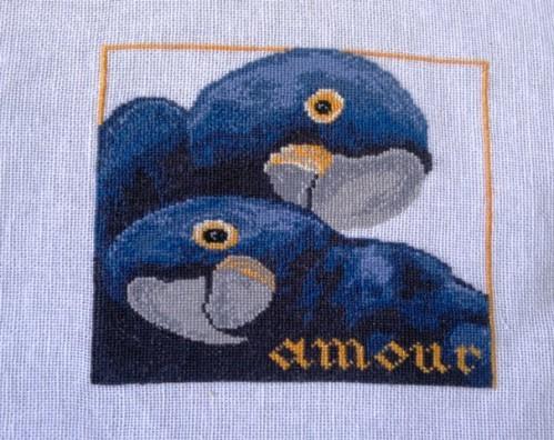 aras bleus